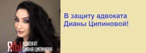 В защиту адвоката Дианы Ципиновой
